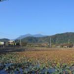 つくば市北条の大池と筑波山