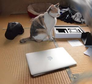 箱から取り出したMacと猫