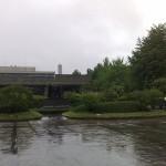 国立西洋美術館の庭園
