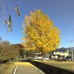 2012/11/18 サイクリング その1