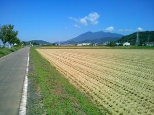 小田、北条辺りの収穫後の水田からの筑波山