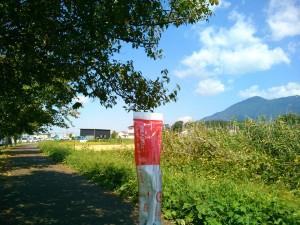 アミノバリューの粉末と筑波山