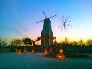 夕方の霞ヶ浦総合公園の風車-地面に明かり