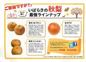 2016年ツールド・梨・IBARAKIで受け取ったチラシ
