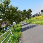 筑波自転車道でつくば市北条地区を訪問