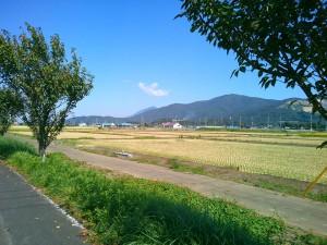 宝篋山の背後から見える筑波山