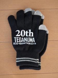 手賀沼エコマラソン2014参加賞のグローブ